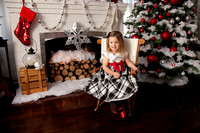 Holiday 2015 CT Portrait Studio The Sassy Space